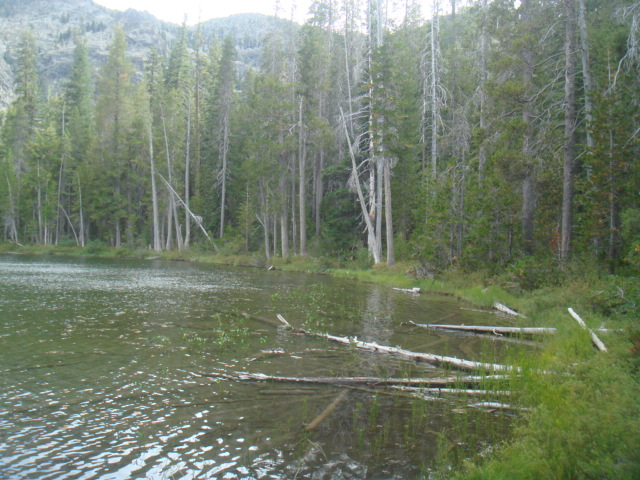 Lower Cliff Lake
