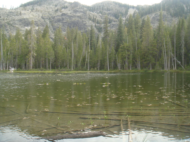 Lower Cliff Lake View