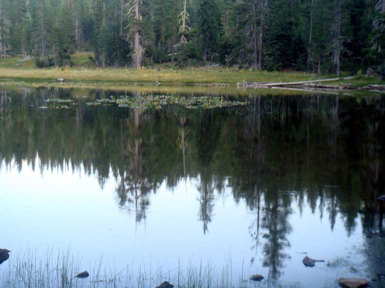Gumboot Lake at Dusk 8