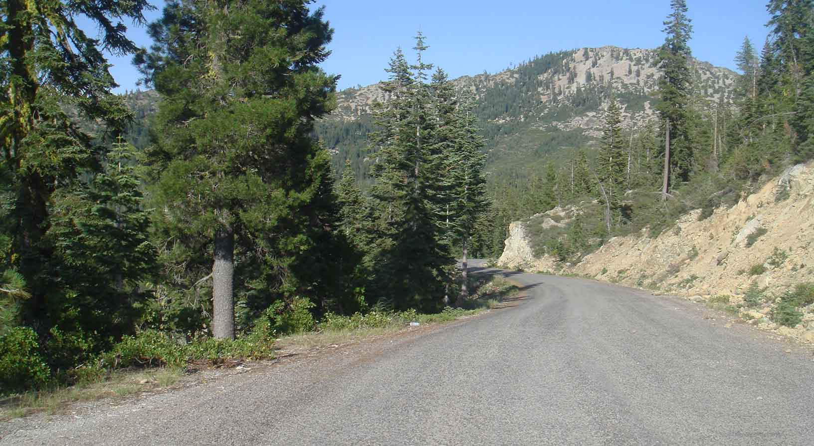 View from FR26 past Gumboot Lake