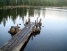Small Dock on Gumboot Lake