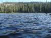 Gumboot Lake, view from dam                            