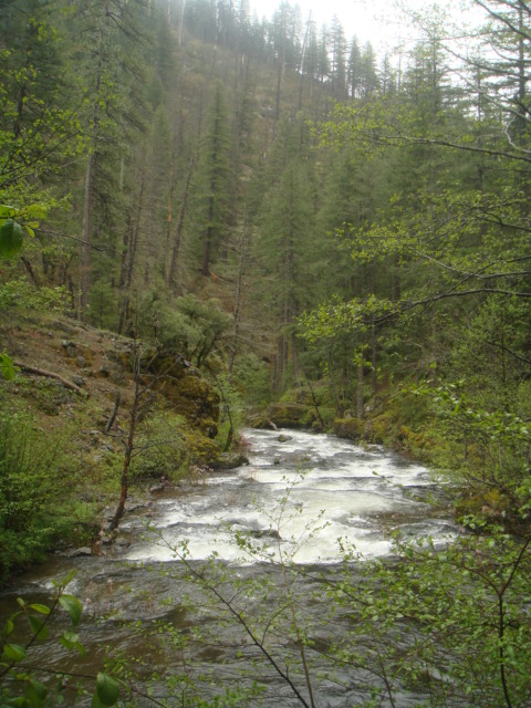 Squaw Creek