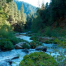 Thumbnail image for Nature Conservancy's McCloud River Preserve