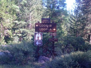 Fowlers Campground Driving Loop