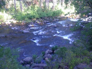 View Of Mccloud River from Fowlers Campground