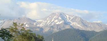 Post image for Summer finally arrives in Mt. Shasta