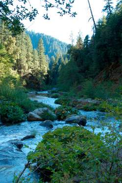 Post image for Nature Conservancy's McCloud River Preserve